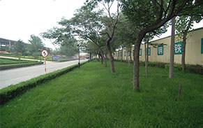 泰东公司钢渣处理厂